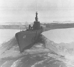 Sennet in the Antarctic Ocean during Operation...
