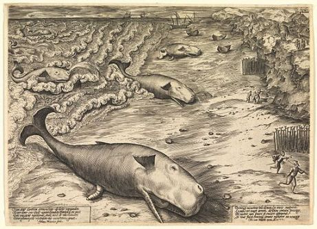 Three Beached Whales, 1577