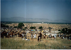"English: The ""Pushkar Camel and cattle Fa..."