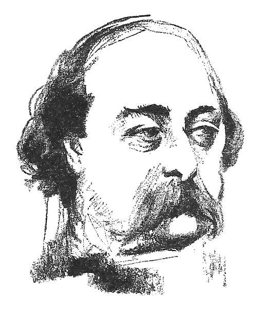Madame Bovary (sv) - Porträtt