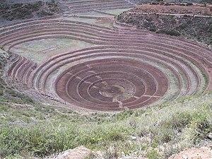 Andenería en Moray (Perú)