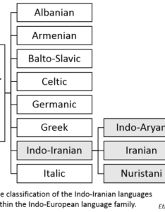 Chart classifying indo iranian languages within the european language family also wikiwand rh