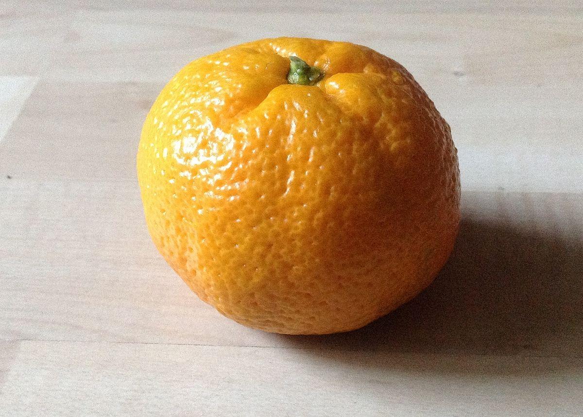 Mandarine  Wikipdia