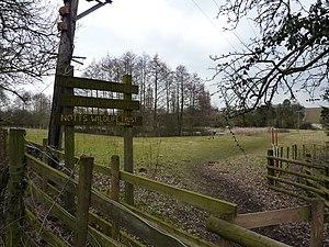 English: Bird watcher at Lambley Reed Pond A s...
