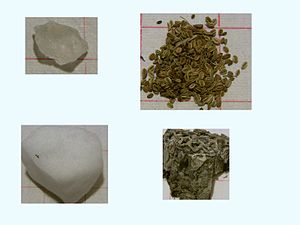 Pictures of herb samples from categories of Ch...