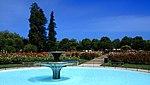 San Jose Municipal Rose Garden1.jpg