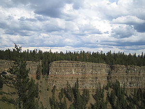 More Chilcotin flood basalts and trees in Chas...
