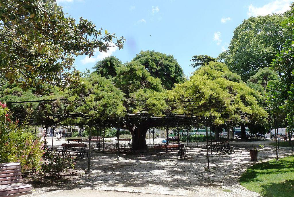 jardin de principe real a lisbonne