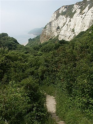 South West Coast Path, Hooken landslide. The m...