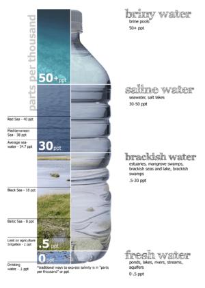 English: Graphic breakdown of water salinity, ...