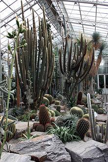botanical garden munich-nymphenburg