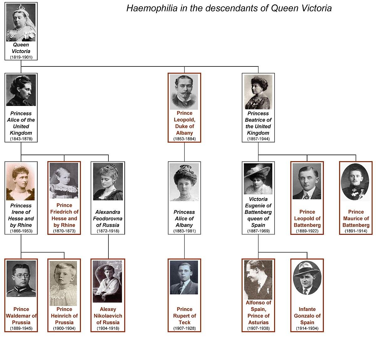 Victoria Queen Hemophilia Chart