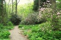 Garden in the Woods - Wikipedia