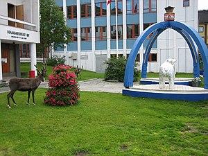 Reindeer in the centre of Hammerfest, Norway