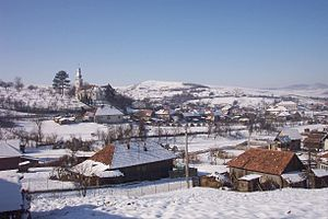 Vişea, Romania, in winter.