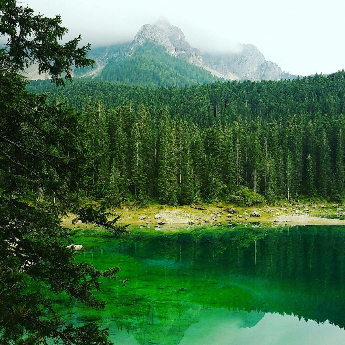 Lago di Carezza  Wikipedia