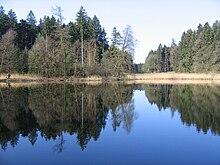 Holzweiher