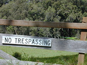 English: Jacksons chameleon on no tresspassing...