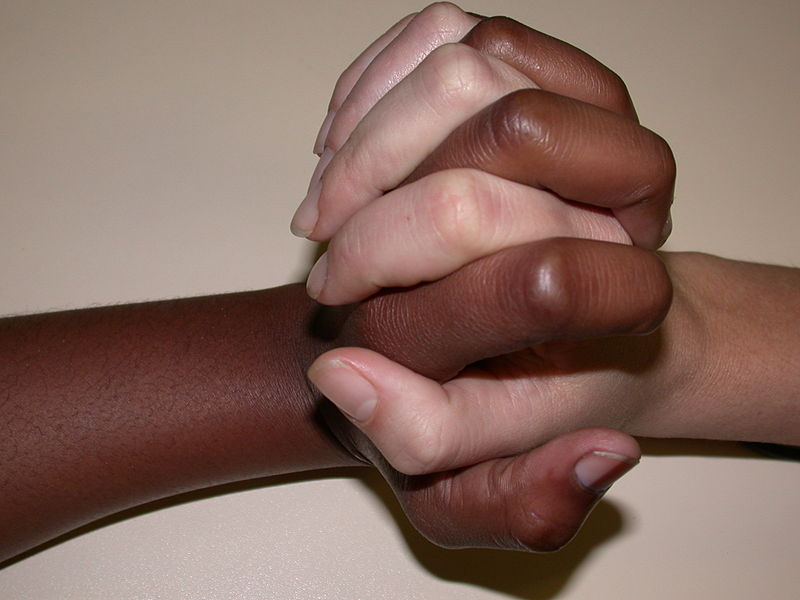 File:Diversity and Unity.jpg
