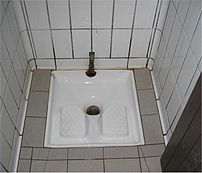 "French ""Squatter"" toilet"