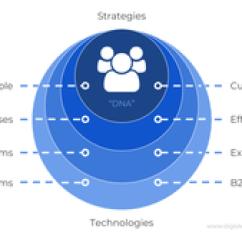 Service Process Diagram Rib Numbers Digital Transformation - Wikipedia