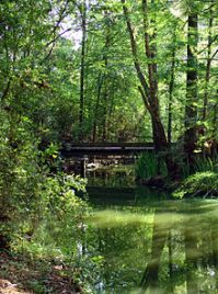 The Woodlands, Texas - Wikipedia
