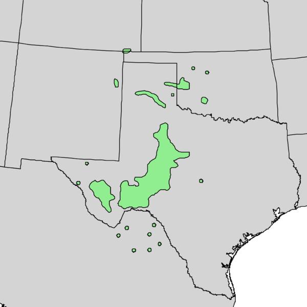Trees of Oklahoma