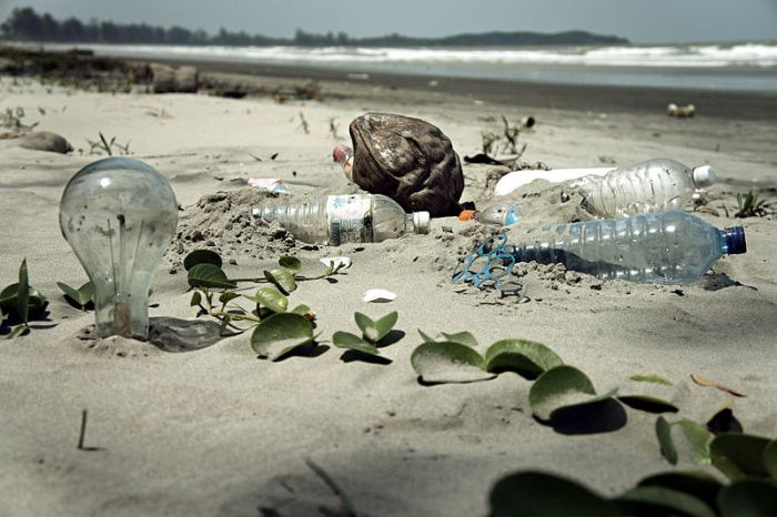 File:Water Pollution with Trash Disposal of Waste at the Garbage Beach.jpg