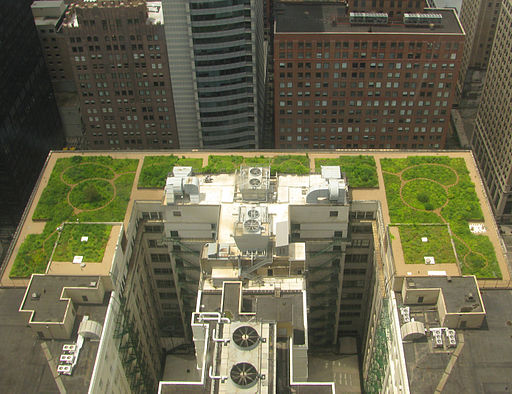 20080708 Chicago City Hall Green Roof edit 2