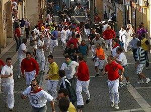English: Running of the bulls in Cuéllar, Sego...