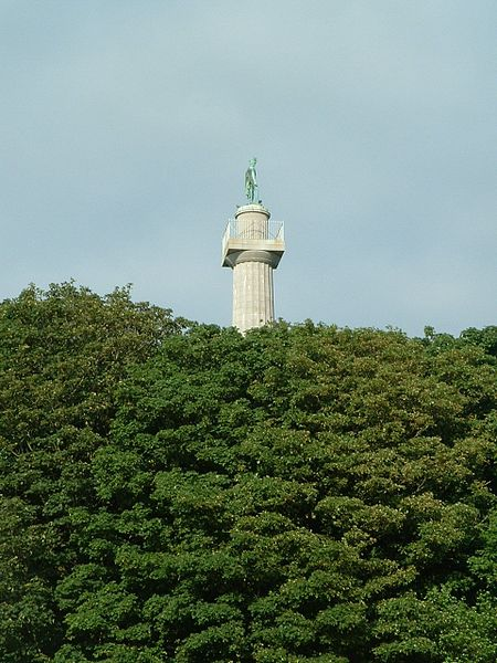 File:Marquess of Anglesey's Column.jpg