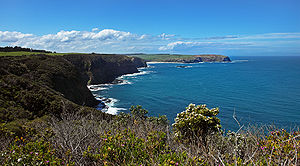taken from Cape Shanck on the mornington penin...