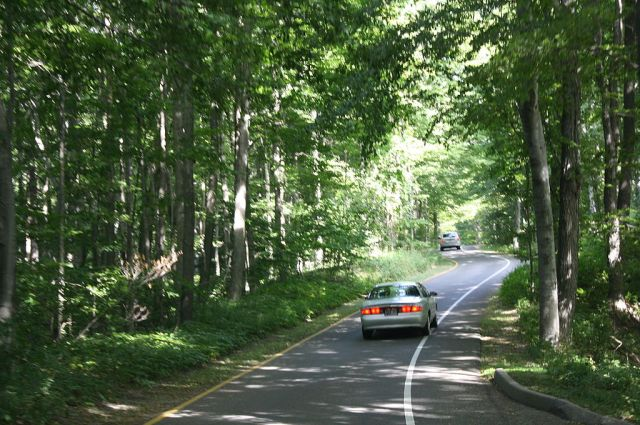 Photograph of the Pierce Stocking Scenic Drive showing a