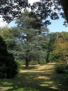 West Sussex  Wikipedia
