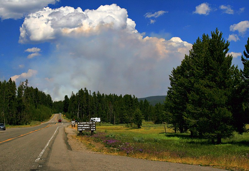 https://i0.wp.com/upload.wikimedia.org/wikipedia/commons/thumb/a/a1/Wildfire_in_Yellowstone_NP_produces_Pyrocumulus_cloud.jpg/800px-Wildfire_in_Yellowstone_NP_produces_Pyrocumulus_cloud.jpg