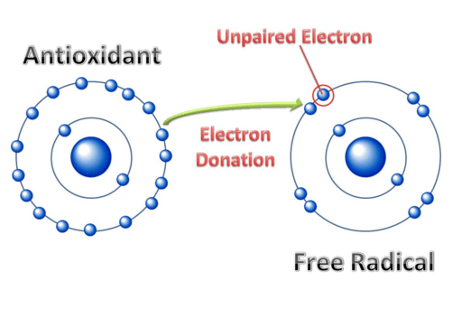 Antioxidants Free radicals Lobo et al.,