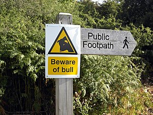 English: Beware of Bull Beware of Bull on publ...