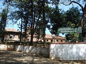 English: Kerala Forest Research Institute, Peechi
