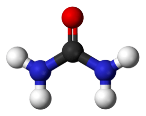 Ball and stick model of the urea molecule.