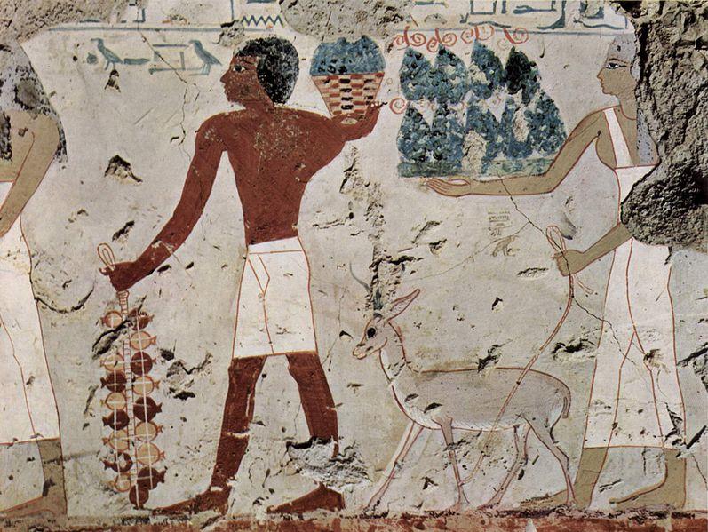 File:Maler der Grabkammer des Amenemhêt 003.jpg