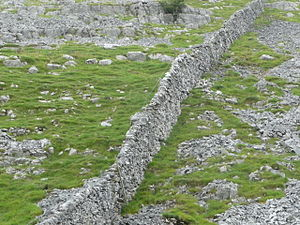 English: Dry stone walls in England near Malha...