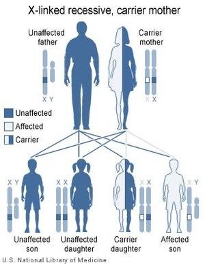 X-linked recessive inheritance: Affected boys ...
