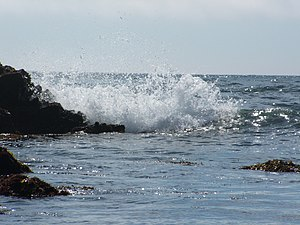 Asilomar State Beach (Breaking wave) 01