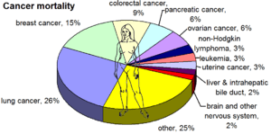 English: Most common cancers in the United Sta...