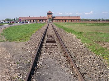 Rail leading to the concentration camp Auschwi...