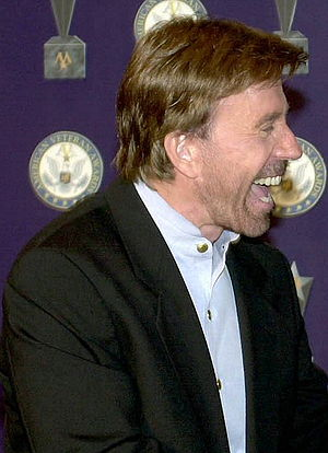 Further cropped version of Image:Chuck Norris ...