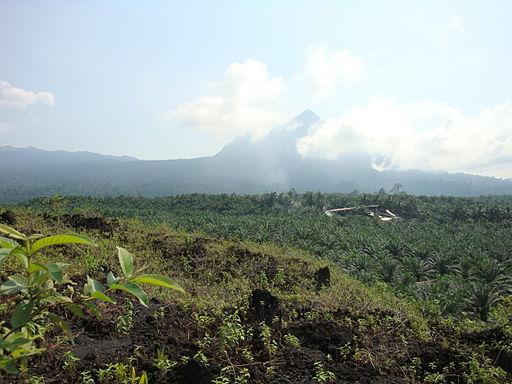 Little Mount Cameroon (Etinde)
