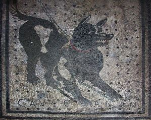 File:Pompeii - Cave Canem (4786638740).jpg