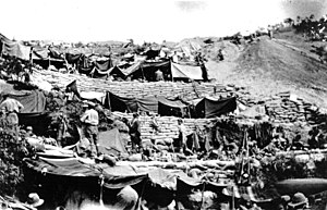 New Zealand soldiers' encampment at Anzac Cove...