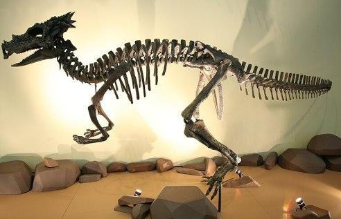File:Dracorex 3.jpg